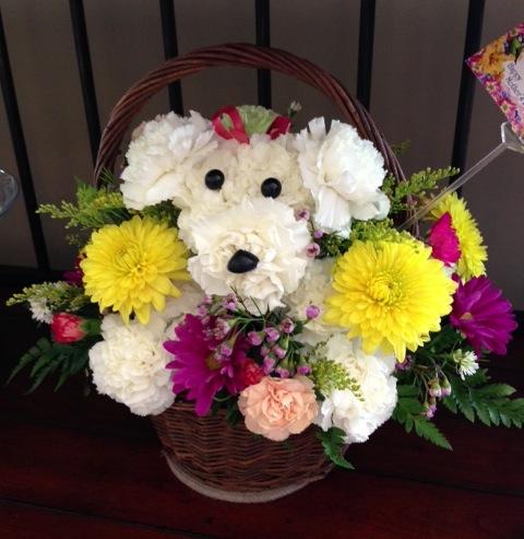 a-dog-able flowers