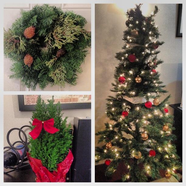 Christmas spirit in Hoboken
